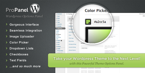 CodeCanyon ProPanel Wordpress Theme Options Panel 866565