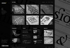 4-homepage-black.__thumbnail