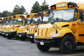 line of yellow school buses - PhotoDune Item for Sale