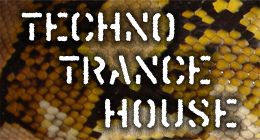 Techno, Trance, House