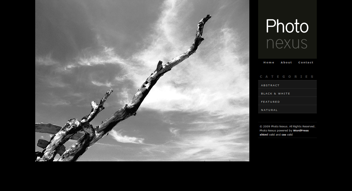 Photo Nexus Wordpress gallery 2 in 1 - Photo Nexus Dark Home Home page of Dark theme