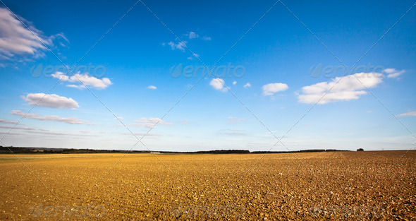 Freshly tilled field - Stock Photo - Images