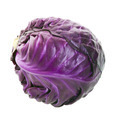 Purple Cabbage Head - PhotoDune Item for Sale