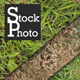 5 Grass Textures - GraphicRiver Item for Sale