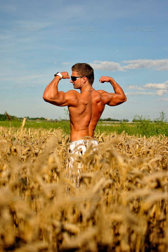 bodybuilder standing waist-deep in the field - Stock Photo - Images