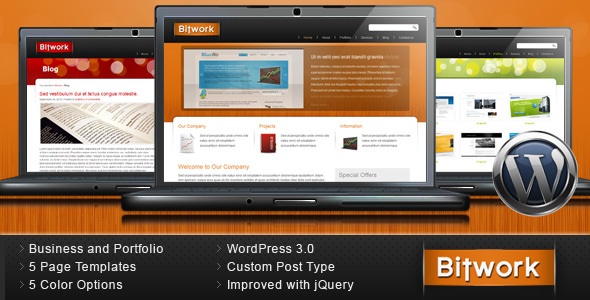 Bitwork - Portfolio and Business Wordpress Theme