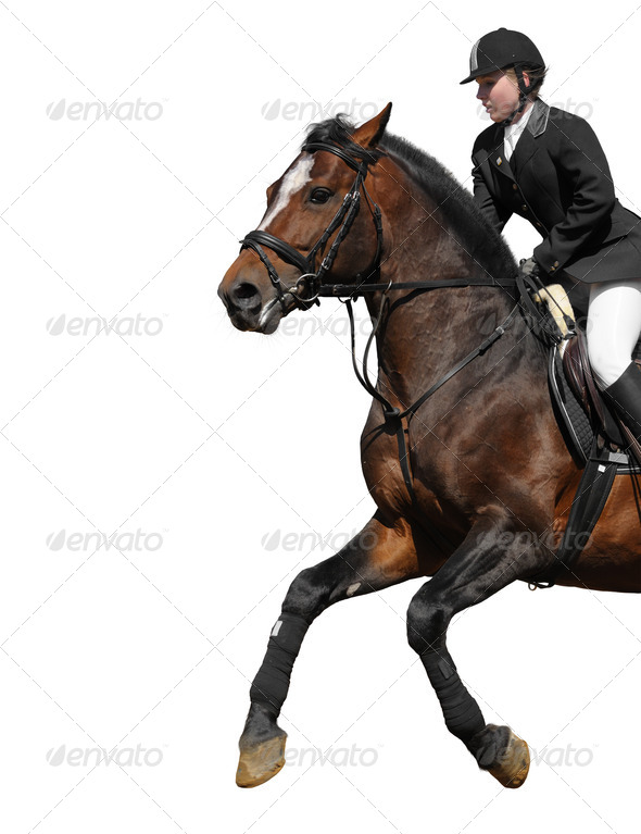 Woman and Horse - Stock Photo - Images