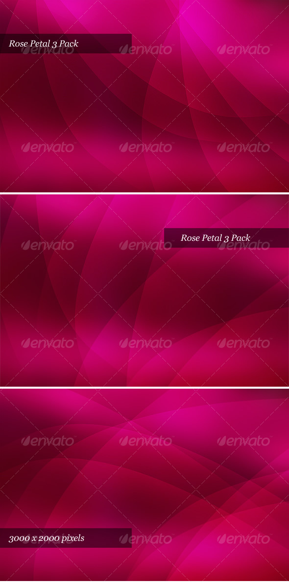 GraphicRiver Rose Petal 43308