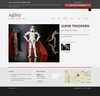 09_agility_portfolio_item.__thumbnail