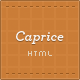 Caprice - Business Template with Portfolio &amp;amp; Blog - ThemeForest Item for Sale