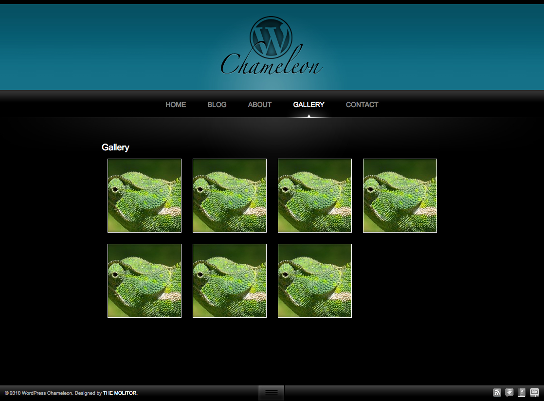Chameleon: Unique Portfolio WordPress Theme