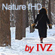 Winter walking. - VideoHive Item for Sale