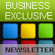 Business Exclusive Email Newsletter - ThemeForest Item for Sale