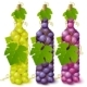 Vine grape bottles - GraphicRiver Item for Sale