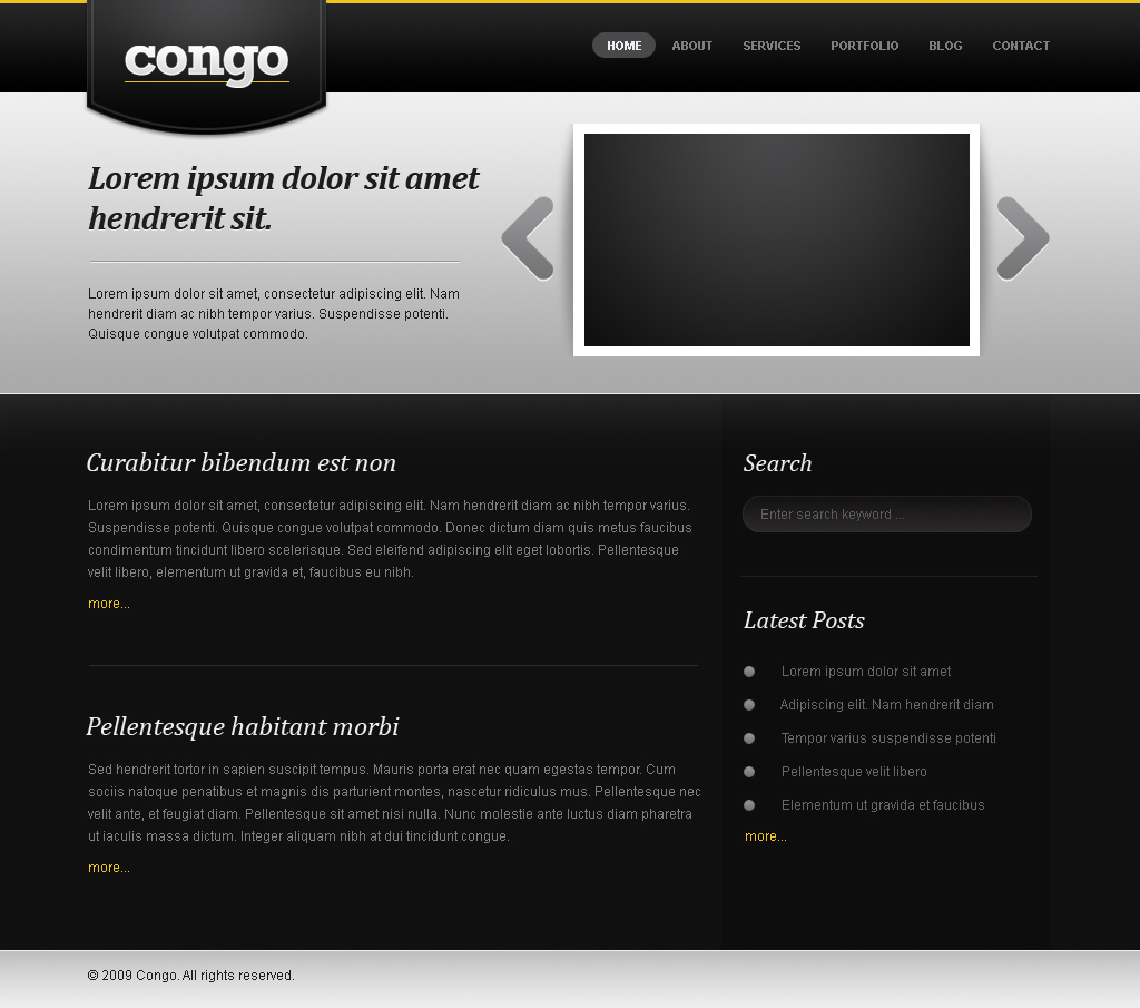 Congo - The Portfolio Template