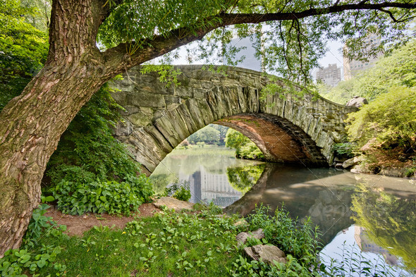 Stock Photo - PhotoDune Bridge in Central Park 1119438
