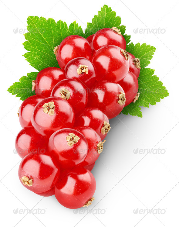 Red currants - Stock Photo - Images