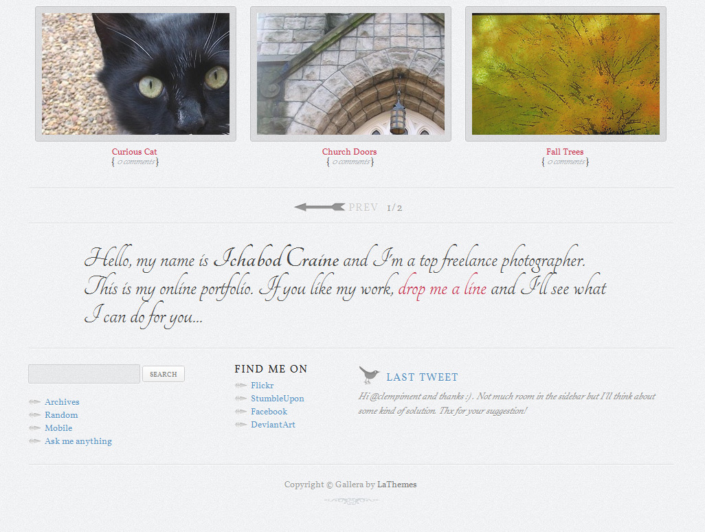 Gallera - Photo Gallery/Portfolio Theme for Tumblr - Intro section & extended Footer with text and links that can be activated from the theme options panel