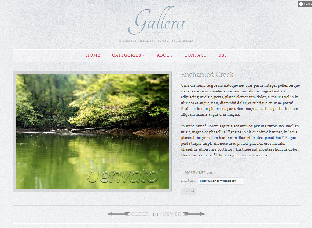 Gallera - Photo Gallery/Portfolio Theme for Tumblr - Internal page with bigger image, text content and metadata