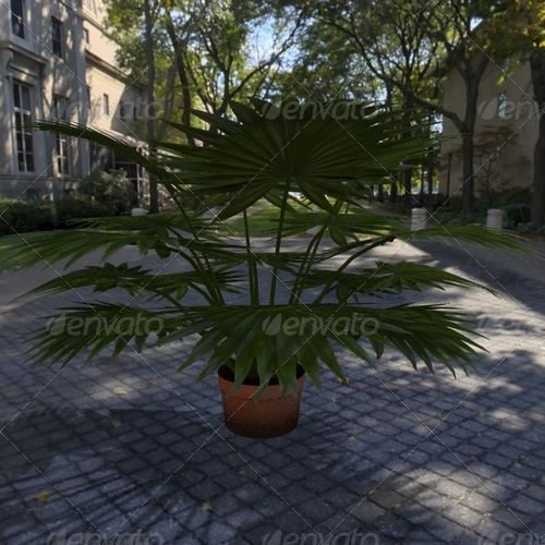 3DOcean plant 139372