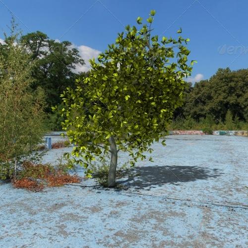 3DOcean tree 139387