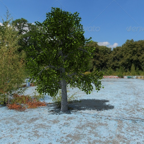 3DOcean tree 139388