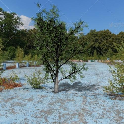 3DOcean tree 139676