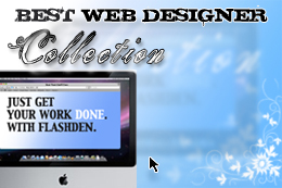 Best Web Designer Collection