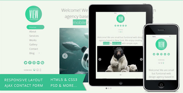 View - HTML5 Responsive Single Page Template -
