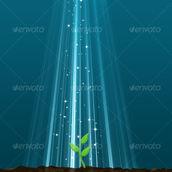 Graphic River New Life From A Magic Light Graphics -  Backgrounds  Nature 38073