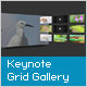 XML Grid Gallery with Keynote Transition - ActiveDen Item for Sale
