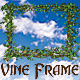 Vine Frame - GraphicRiver Item for Sale
