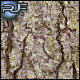 Tree Bark #4 - GraphicRiver Item for Sale