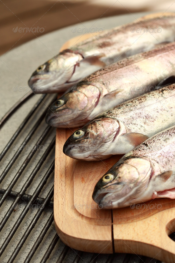 Trouts - Stock Photo - Images