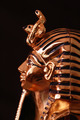 King Tut - PhotoDune Item for Sale