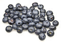 Blueberries - PhotoDune Item for Sale