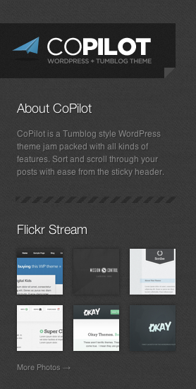 CoPilot WordPress Theme