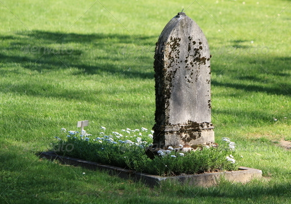 Old tombstone and green grass - Stock Photo - Images
