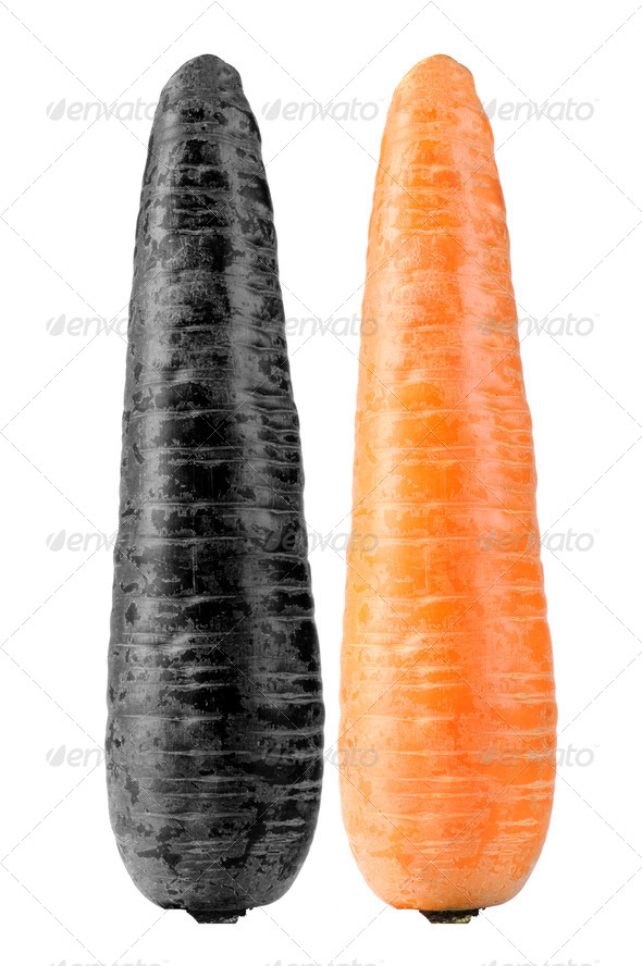 Contaminated and Organic Carrots Isolated on White Background - Stock Photo - Images
