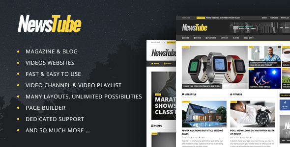 Image result for NewsTube  WordPress Theme