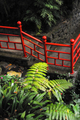 Monte Palace Tropical Garden– Monte, Madeira - PhotoDune Item for Sale
