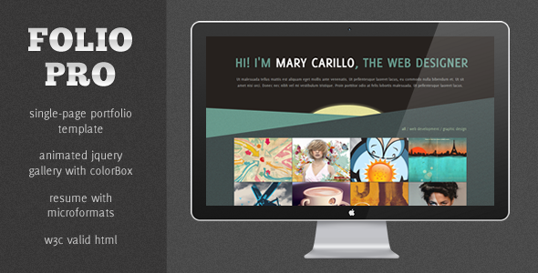 Folio Pro - A Strking Single Page Portfolio