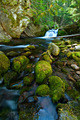 Waterfall on a Mountain Stream in the Forest - PhotoDune Item for Sale