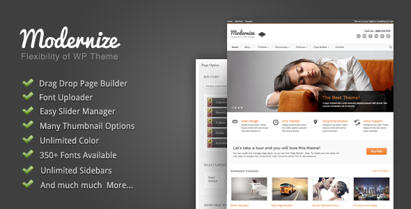 01 intro.  large preview Top10 Wordpress Premium Themes 2012
