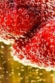 Strawberry in glass of champagne - PhotoDune Item for Sale