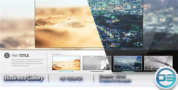 After Effects Project - VideoHive Business Gallery 131811