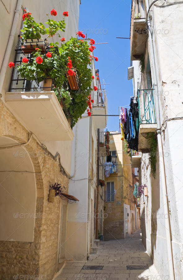 Alley in Palo del Colle Oldtown. Apulia. - Stock Photo - Images