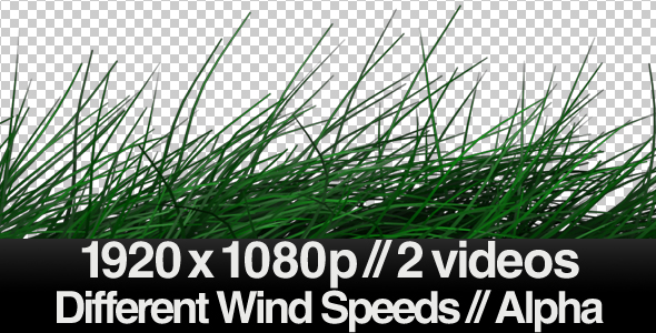 [VideoHive 154732] 2 Realistic Grass Blowing Videos Windy ALPHA | Motion Graphics