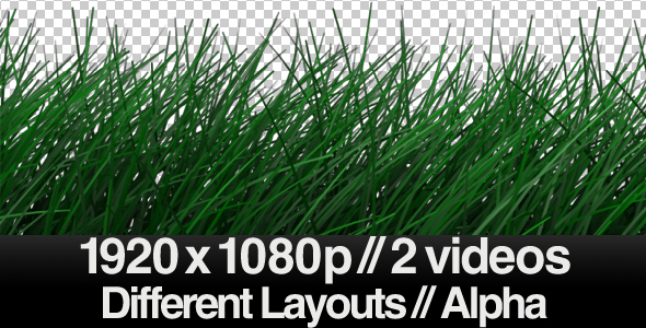 [VideoHive 154733] Realistic Grass Blowing in Wind Calm ALPHA | Motion Graphics