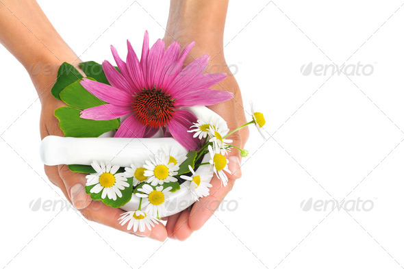 Young  woman holding mortar with herbs – Echinacea, ginkgo, chamomile - beauty concept - Stock Photo - Images